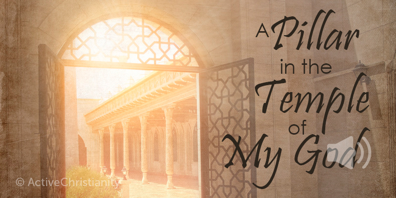 The 6th extraordinary promise: A pillar in the temple of My God